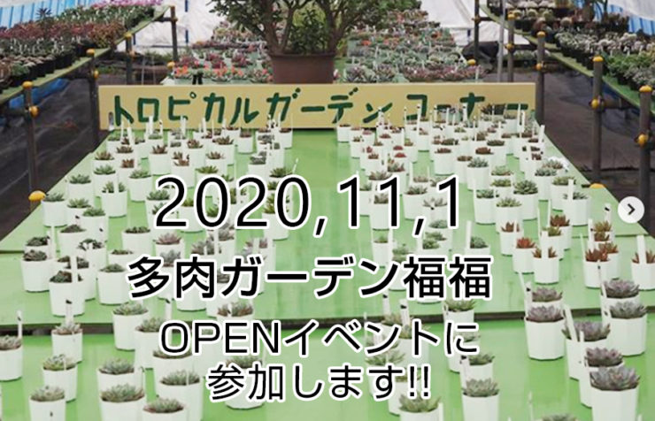 多肉ガーデン福福(PUKPUK)OPENイベントに参加します!!